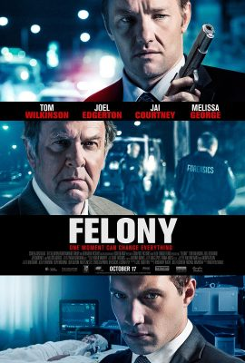Xem phim Trọng Án – Felony (2013)